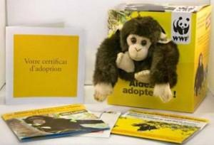 adoption-soko-WWF-300x204 dans éco-sensibilisation